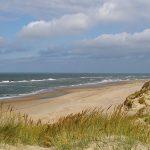 strand heemskerk