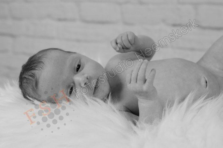 FSH_newbornshoot
